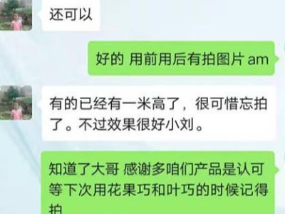 广西来宾合山市百香果种植户蓝柳林——稼乐夫水溶肥客户案例