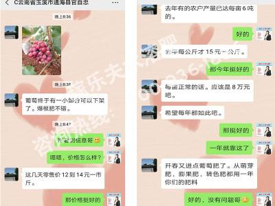 云南玉溪葡萄种植户官经理——稼乐夫水溶肥客户案例
