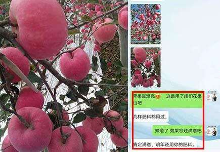 甘肃平凉苹果上使用