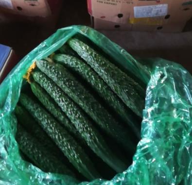 使用过稼乐夫肥料的黄瓜品质好产量高