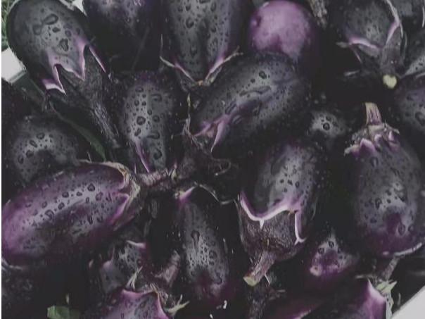 蔬菜水溶肥怎么用效果好?蔬菜水溶肥的施肥小技巧有哪些?