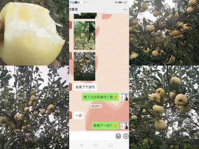 苹果用什么品牌的膨果肥好?