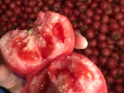 什么厂家的番茄水溶肥效果好?