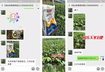 山东青岛零售商刘经理
