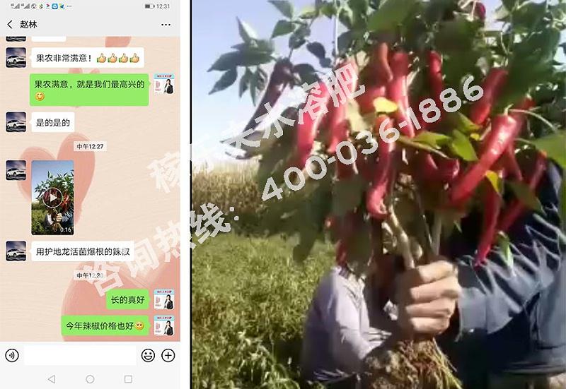 甘肃金昌代理商赵经理